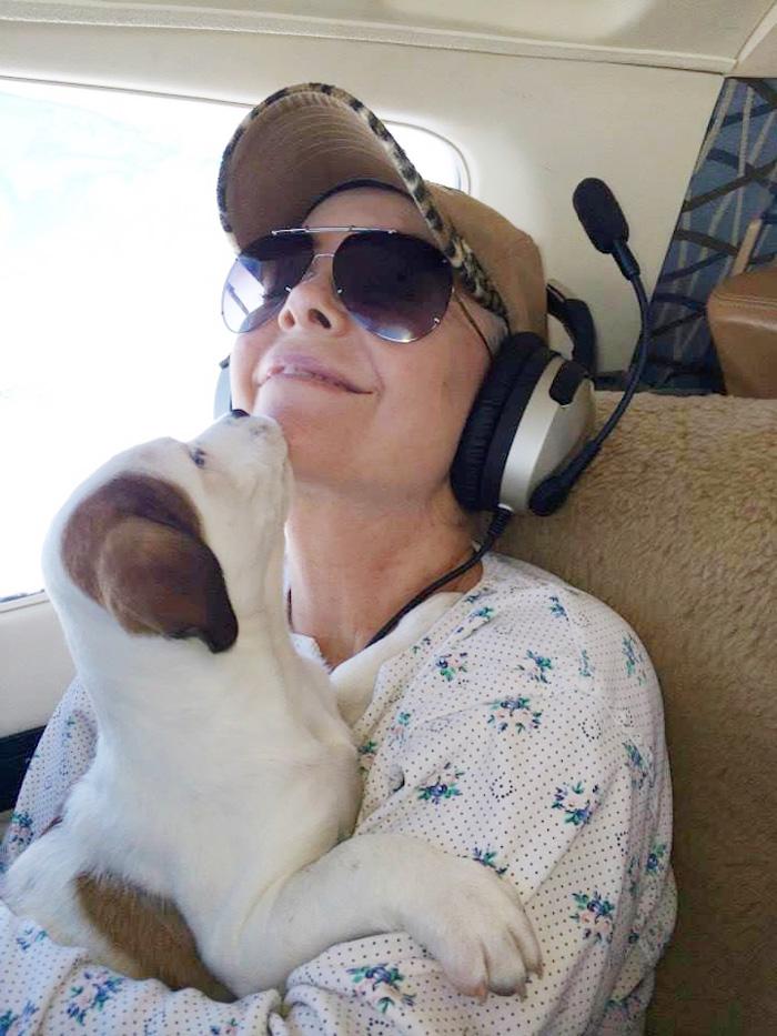 pilotos-voluntarios-salvan-perros-2