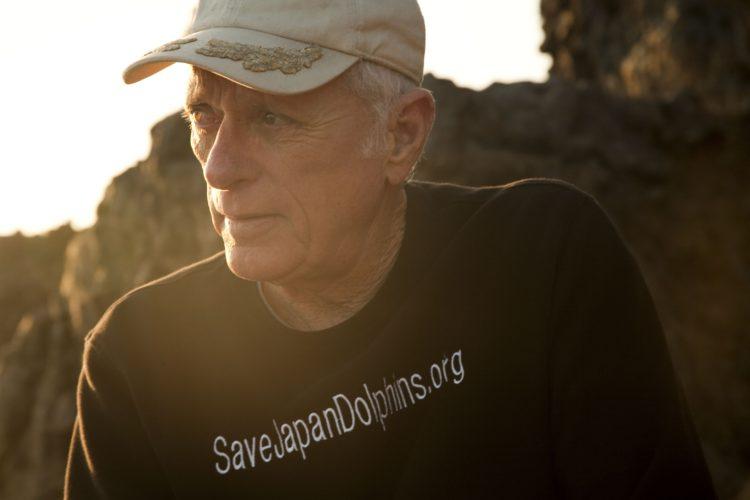 salvemos-a-delfines-masacre