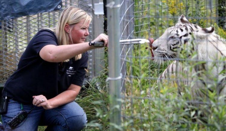 desgaste-por-compasion-aman-tanto-a-los-animales-que-duele-y-afecta-su-vida-5