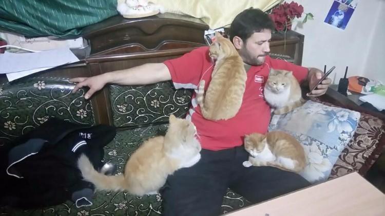 destruyen-alepo-refugio-gatos-15