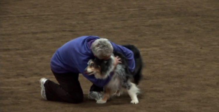 este-perro-mayor-se-despedia-de-la-competencia-4