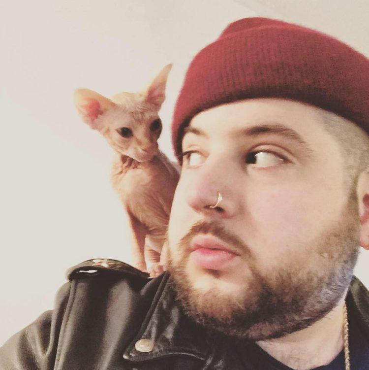 gato-odia-la-caja-de-arena-encuentra-la-mejor-forma-de-ir-al-bano-2