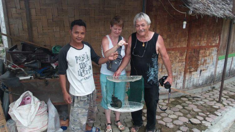 los-turistas-encuentran-gato-izquierda-monton-de-basura-7