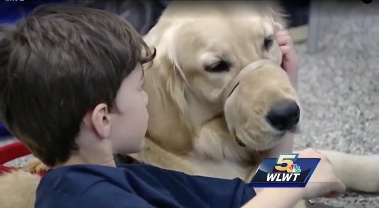 madre-nino-autista-perro-mejor-amigo-06
