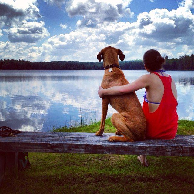 mujer-se-reune-amor-de-su-vida-en-el-perro-park-1