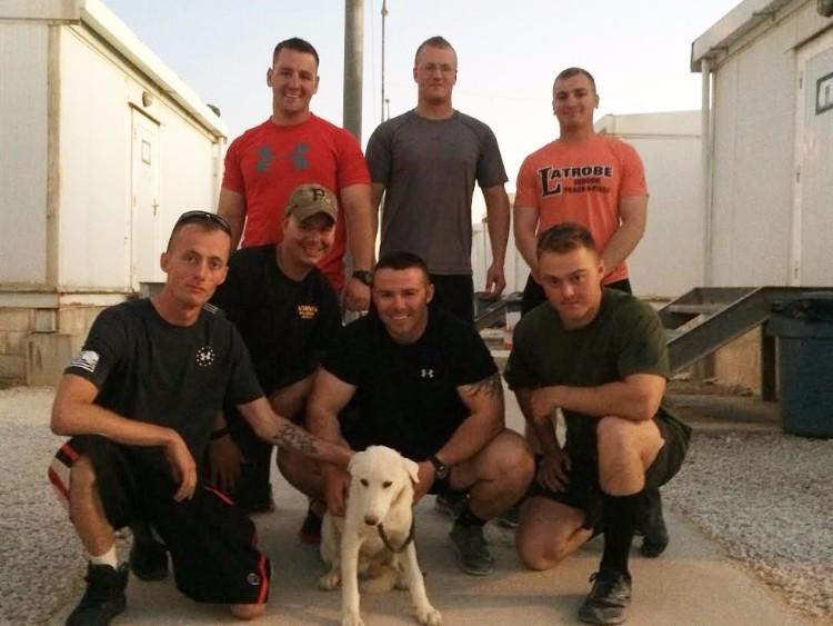 soldado-mision-salvo-perro-02