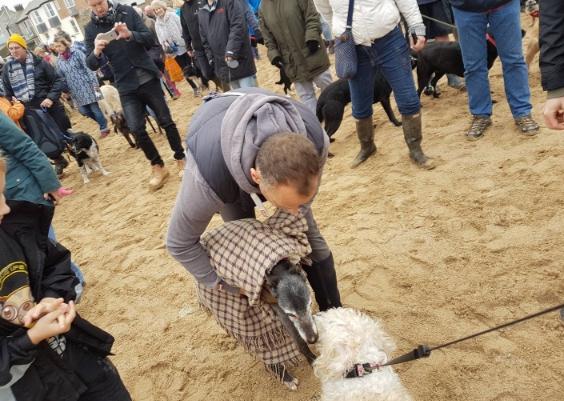 cientos-de-personas-acompanan-a-perro-ultimo-paseo8