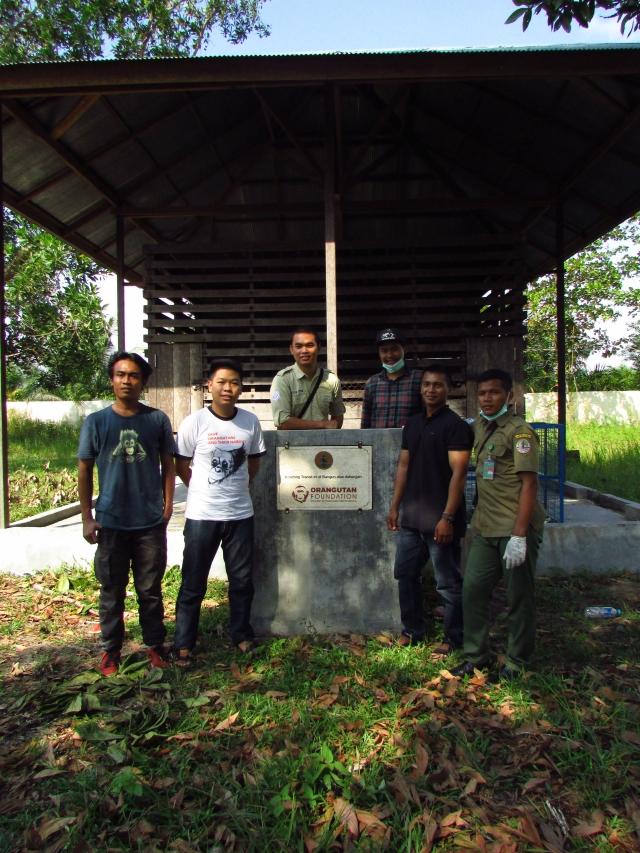 orangutan-rawit-5
