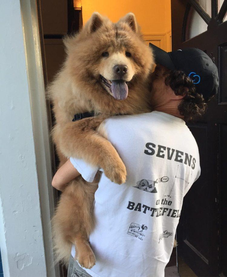 perro-enojon-bubbe-5