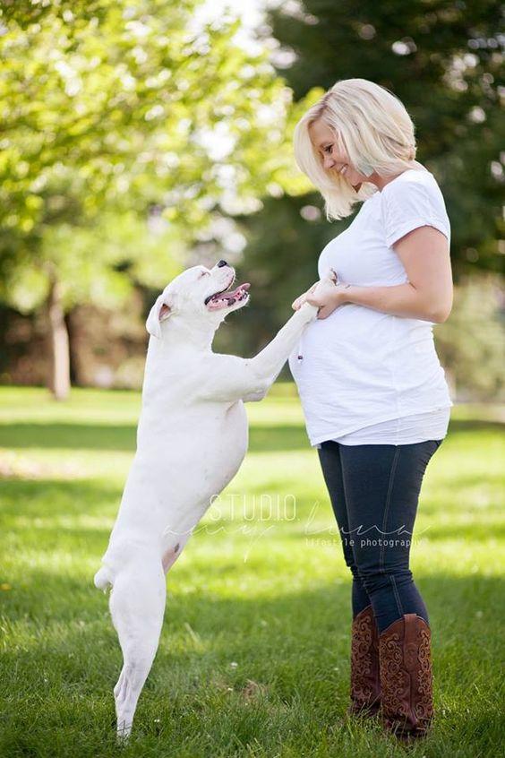 perro-y-mujeres-embarazadas-10