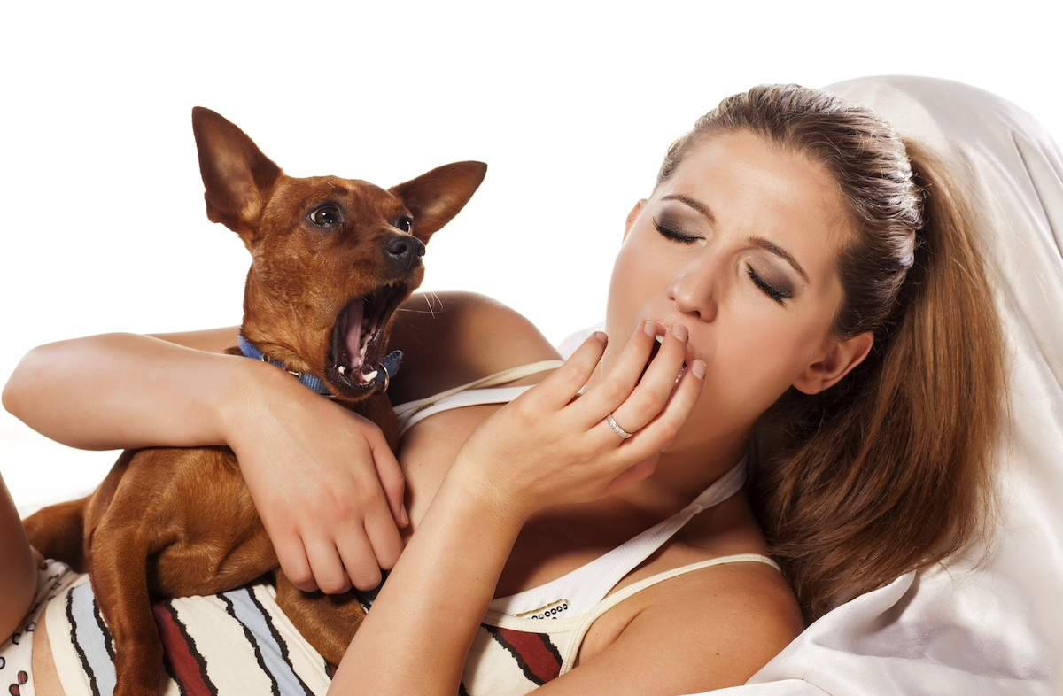 girl and her little dog yawn together