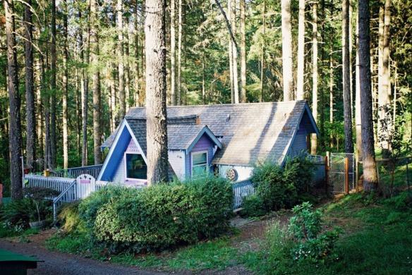perros-casitas-en-el-bosque-9