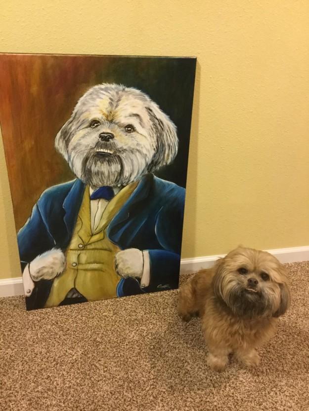perros-perfectos-4