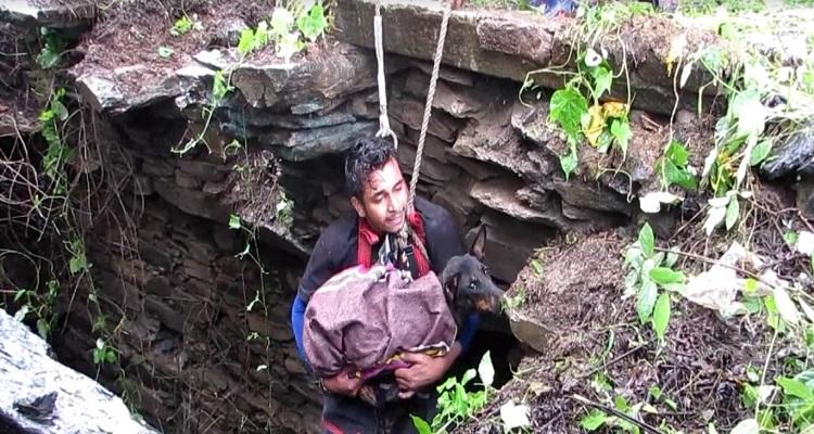 perrita-llora-de-alegria-al-ser-rescatada-de-pozo-en-la-india-5