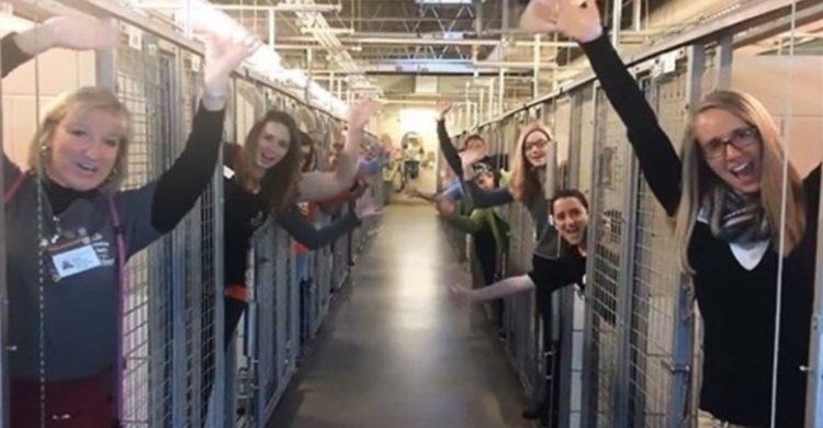 celebran-en-refugio-que-adoptaron-a-todos-los-animales2