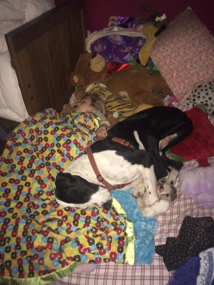 bella-burton-puede-andar-gracias-a-la-ayuda-de-su-perro-y-gran-amigo-george-11