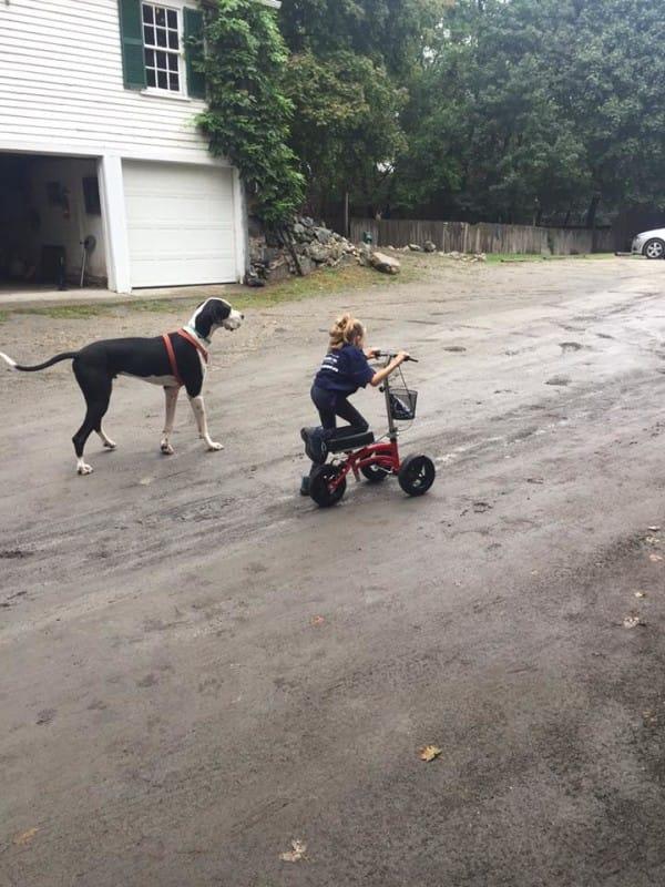 bella-burton-puede-andar-gracias-a-la-ayuda-de-su-perro-y-gran-amigo-george-13