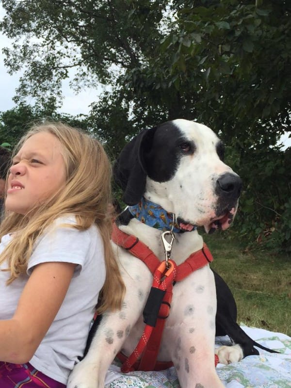 bella-burton-puede-andar-gracias-a-la-ayuda-de-su-perro-y-gran-amigo-george-14
