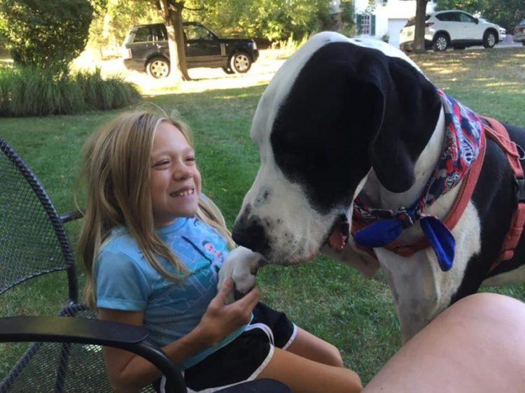bella-burton-puede-andar-gracias-a-la-ayuda-de-su-perro-y-gran-amigo-george-15