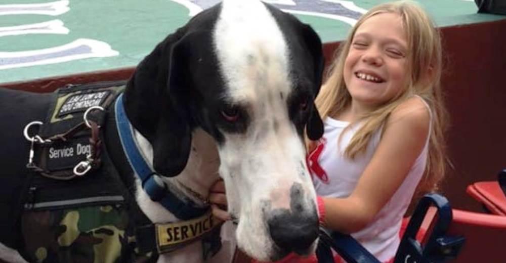 bella-burton-puede-andar-gracias-a-la-ayuda-de-su-perro-y-gran-amigo-george-29