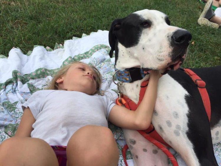 bella-burton-puede-andar-gracias-a-la-ayuda-de-su-perro-y-gran-amigo-george-9