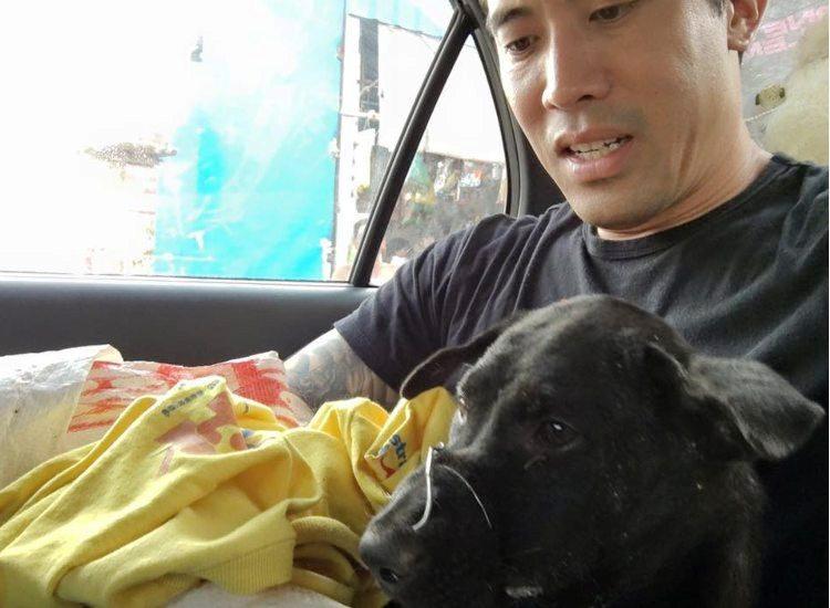 marc-ching-hombre-lucha-contra-maltrato-perros-asia-1