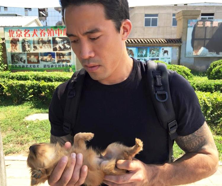 marc-ching-hombre-lucha-contra-maltrato-perros-asia-10