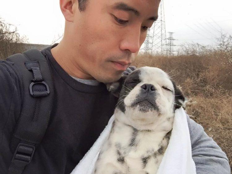 marc-ching-hombre-lucha-contra-maltrato-perros-asia-21
