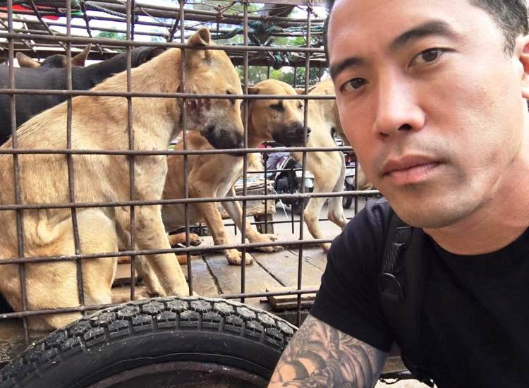 marc-ching-hombre-lucha-contra-maltrato-perros-asia-3