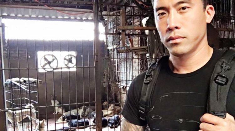 marc-ching-hombre-lucha-contra-maltrato-perros-asia-4