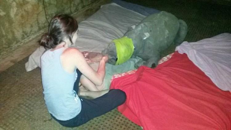 nandi-rinoceronte-rescatado-jamie-cuidadora-03