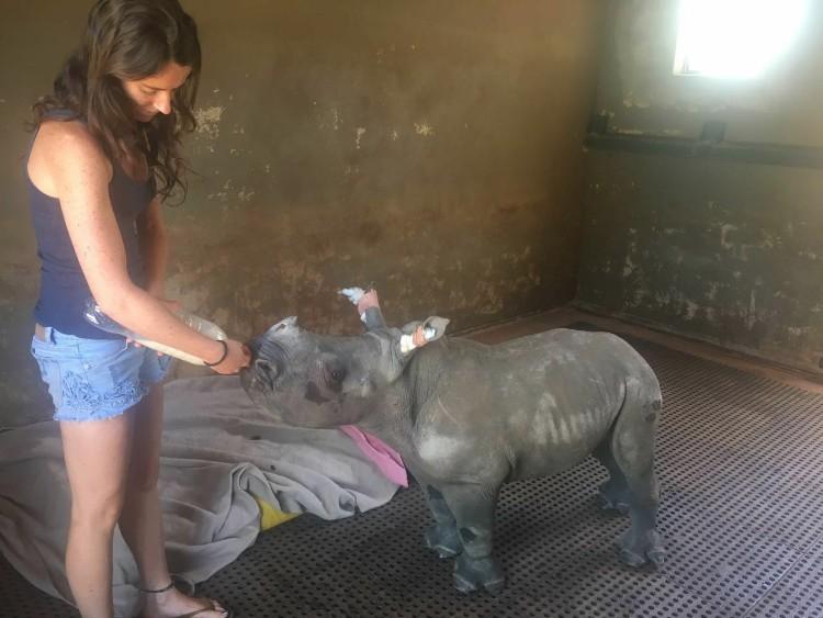 nandi-rinoceronte-rescatado-jamie-cuidadora-05