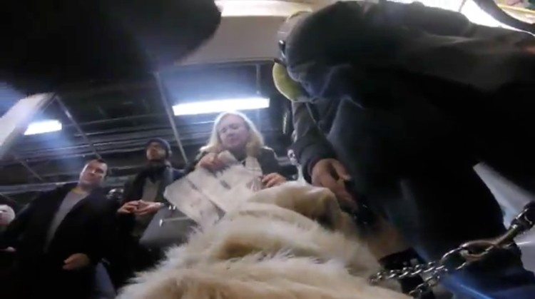 perra-guia-gopro-londres-11
