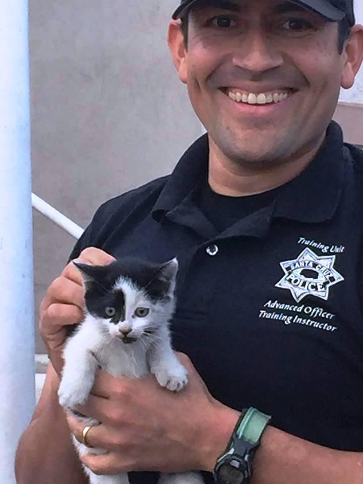 policia-de-santa-cruz-rescata-a-un-gato-2