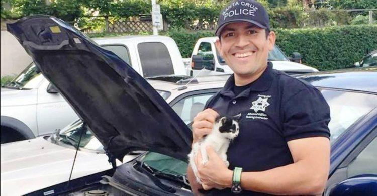 policia-de-santa-cruz-rescata-a-un-gato-portada
