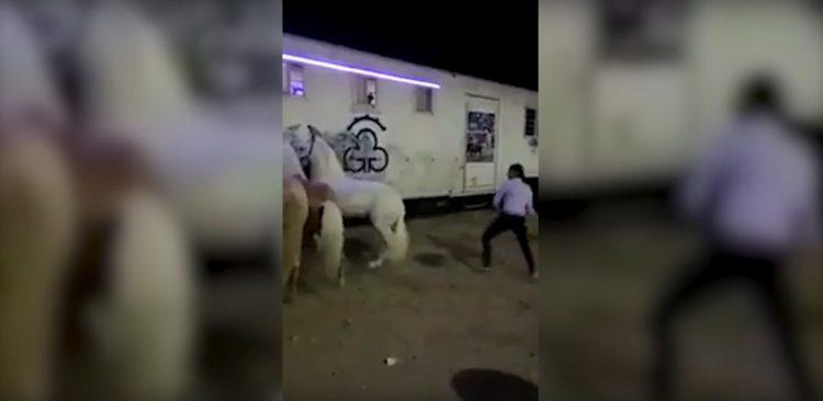 rejoneador-emiliano-gamero-castiga-a-su-caballo-propinandole-una-golpiza-1