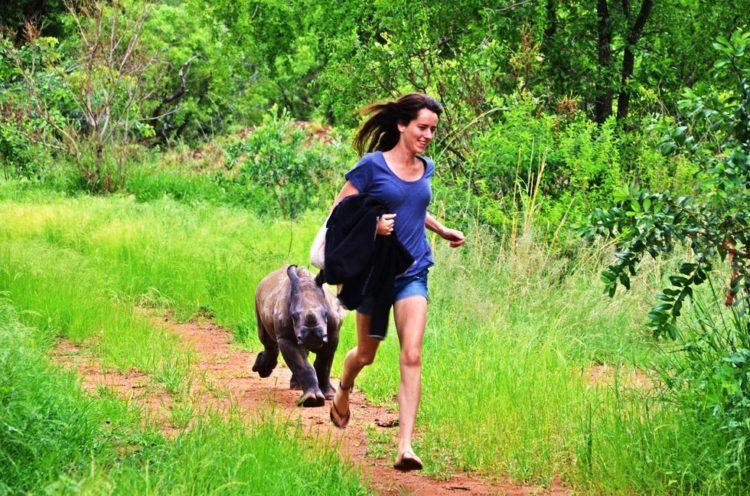 rinoceronte-con-una-gran-actitud-6