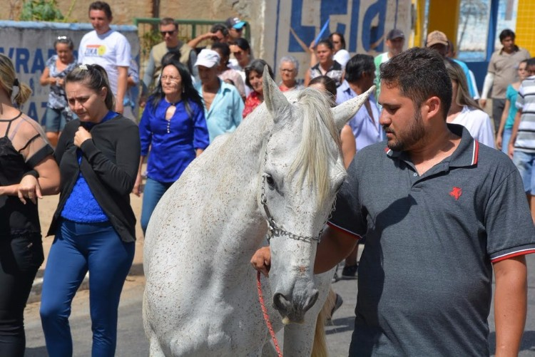 sereno-caballo-llora-funeral-brasil-01