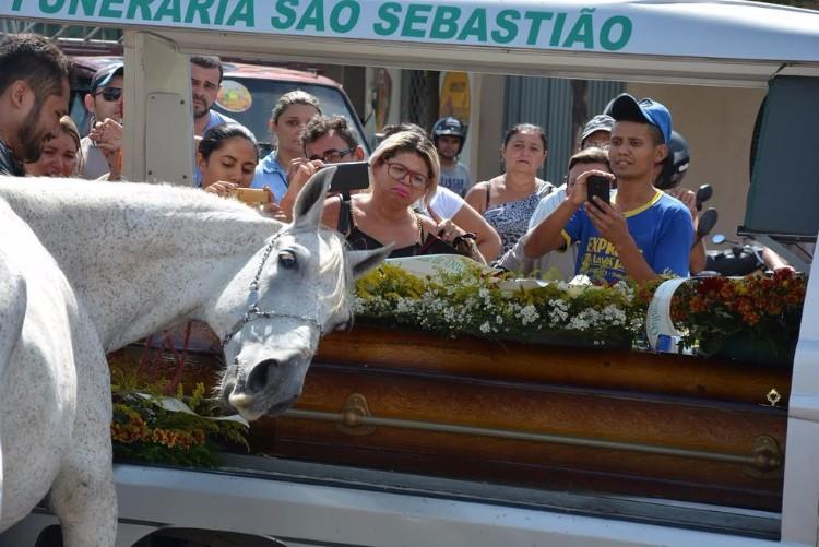 sereno-caballo-llora-funeral-brasil-03