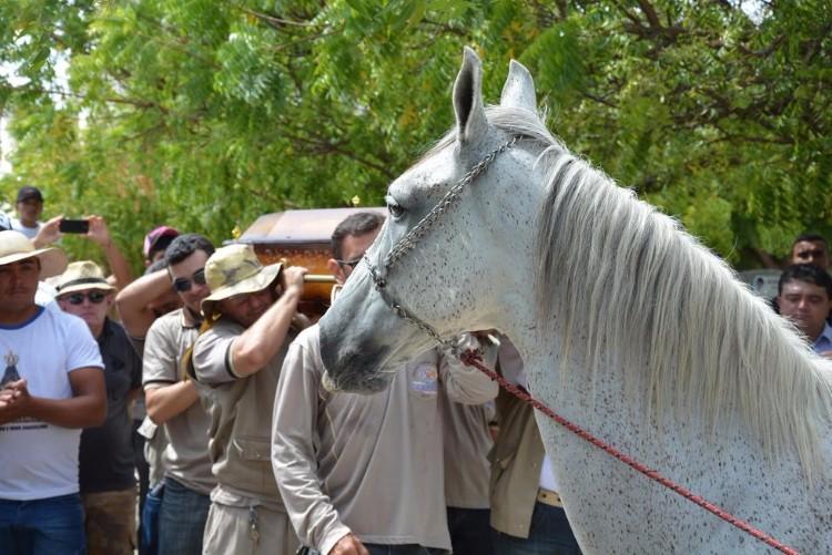 sereno-caballo-llora-funeral-brasil-07