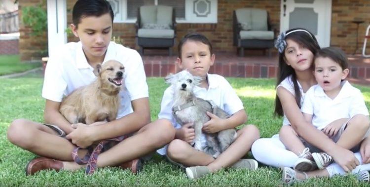 su-perro-aparecio-despues-de-6-anos-pero-no-estaba-solo-y-su-familia-adopto-a-su-amigo-6