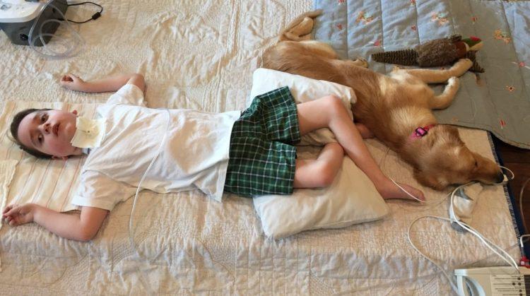 perro-ayuda-nino1