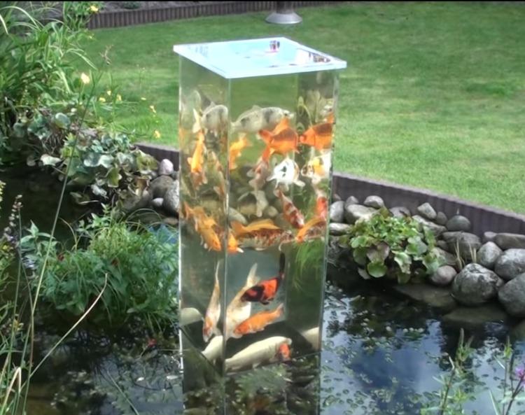 Los acuarios sin fondo una nueva tendencia en la que for Peces artificiales para acuarios