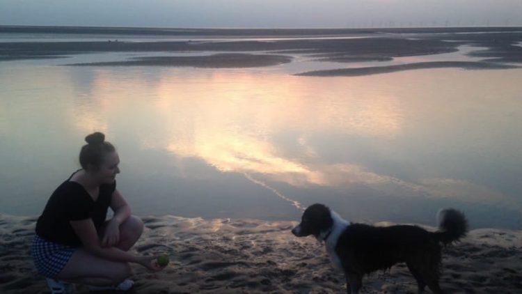 perro trae cargador Sophie Billington inteligente mama genial broma perrito cachorro tierno ayuda asistencia dog brings phone charger