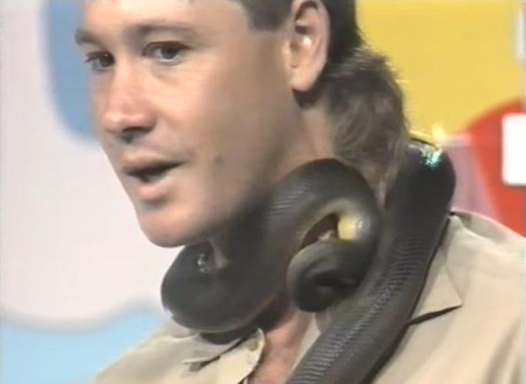 recuerdo de steve irwin cuando era joven mordido por una piton en plena entrevista bitten snake live