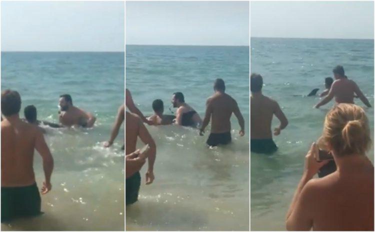 emotivo rescate delfin varado playa El Buzo de El Puerto de Santa María cadiz andalucia españa hilo de pesca red enredado stranded beach dolphin rescued spain tied up fishing line net