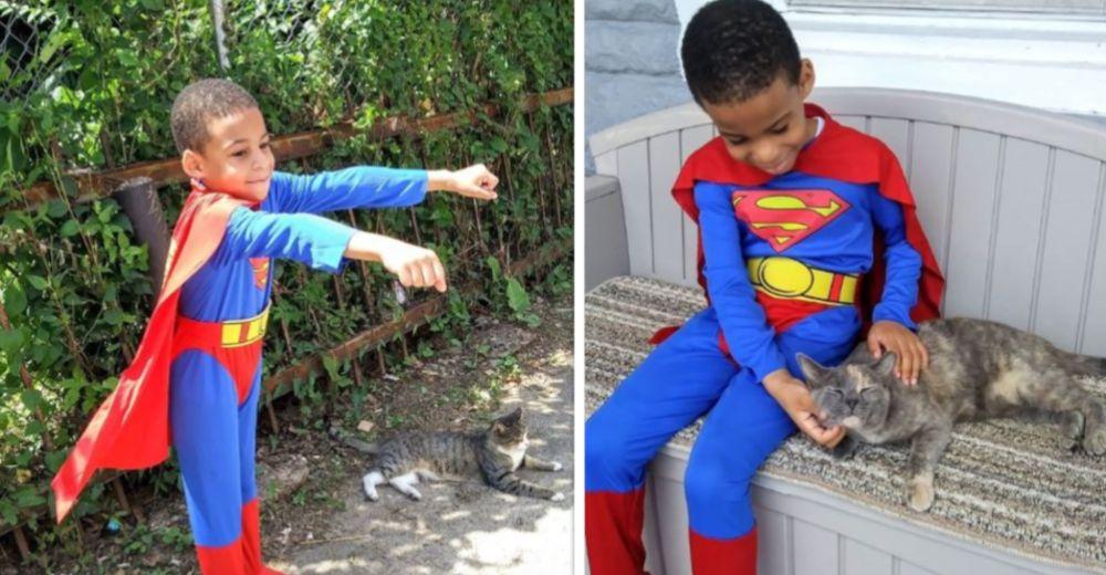 Adorable – Niño de 8 años se convierte en Catman: el superhéroe de los gatos