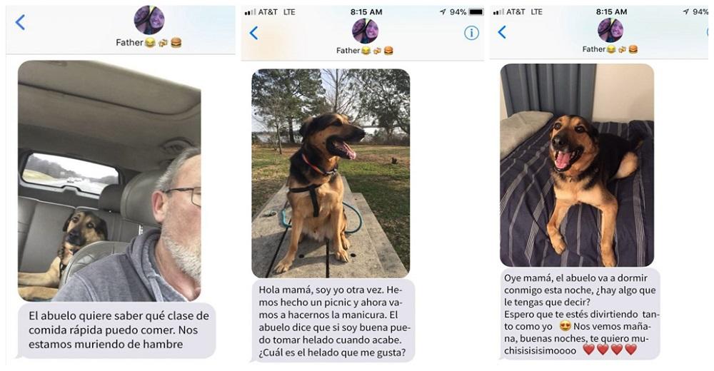 Deja a su perro al cuidado de su padre y comienza a recibir muchos mensajes en su teléfono