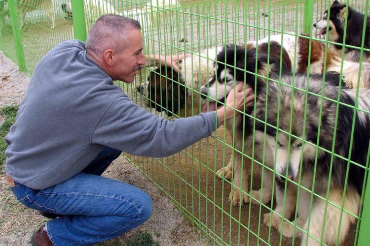 los Ángeles en Los Estados Unidos 0 muertes no kill meta animales sacrificados eutanasia perros gatos refugios animales proteccion shelter voluntariado voluntarios volunteers