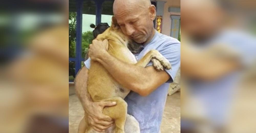 Una perrita sólo quiere estar abrazada a su salvador tras ser rescatada del comercio de carne